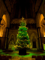 006 12thDec2015 Salisbury Cathedral - Bach Oritorio - by Ash Mills