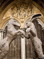 001 4thApril 2016 Sophie Ryder at Salisbury Cathedral - by Ash Mills