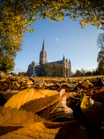 004 5th November 2016 - Salisbury Cathedral -  photo by Ash Mills