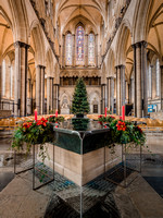 003 9thDec2016_Salisbury Cathedral_Photo by Ash Mills