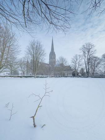 Salisbury Cathedral 03032018_Photo by Ash Mills 0017