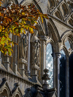 002   27thOctober2017 - Salisbury Cathedral - Photo by Ash Mills