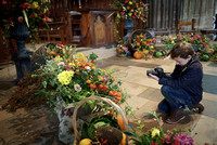 010 Harvest Festival at Salisbury Cathedral 9thOct2016 photo by Ash Mills